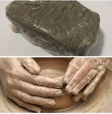 "square Kato raw polymer clay cane Premo # 01230  7//8/"" x 1 5//8/"" 1 ounce"