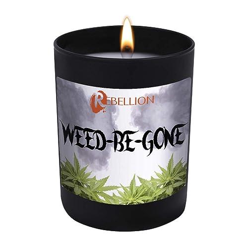Beamer Cannabis Killer 12oz Natural Odor /& Smoke Eliminator Scented Candle 90 Hr