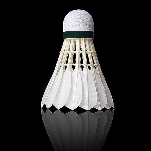 Neon Plastic Shuttlecocks10-pack Highly-visible Bright Badminton Birdies