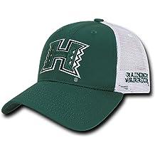 Central Connecticut State Blue Devils CCSU NCAA Flat Bill Snapback Baseball Hat